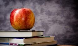 Педагог дополнительного образования