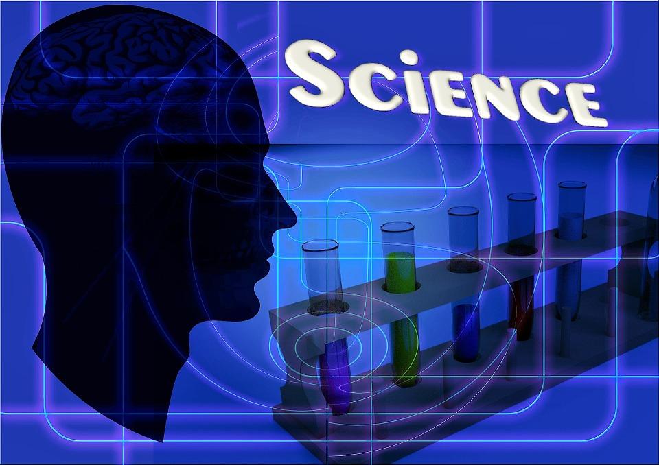 Учитель химии в условиях реализации ФГОС / Учитель химии