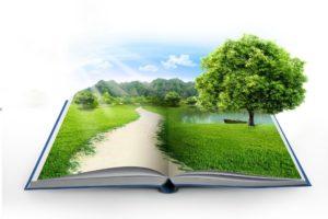Современные методики преподавания в образовательных организациях СПО в условиях реализации ФГОС. Экология