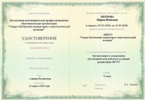 Организация и содержание логопедической работы в условиях реализации ФГОС