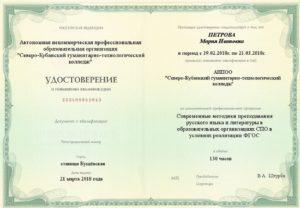 Современные методики преподавания русского языка и литературы в образовательных организациях СПО в условиях реализации ФГОС