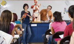 Современные методики преподавания в образовательных организациях в условиях реализации ФГОС. Биология