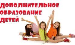 Педагогика и методика дополнительного образования детей в условиях ФГОС