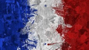 Современные методики преподавания в образовательных организациях в условиях реализации ФГОС. Французский язык