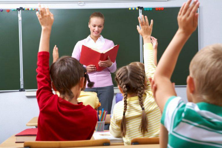 Педагогическая деятельность в образовательной организации