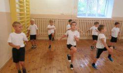 Организация дополнительного образования детей дошкольного возраста по направлению физкультурно-оздоровительной работы