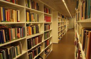 Специалист в области библиотечно-информационной деятельности